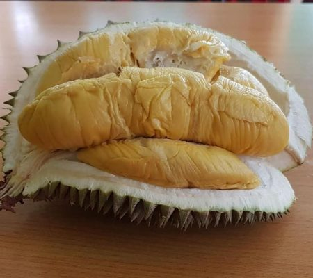 Delicious durian in shell