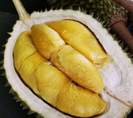 Durian Seller Singapore - Black Gold Durian